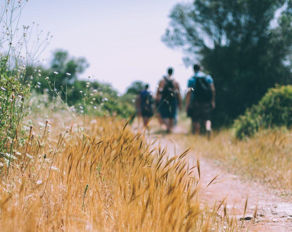 randonnée nature